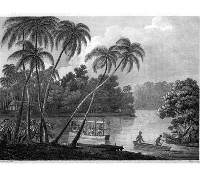 Voyages and Travels to India, Ceylon, the Red Sea, Abyssinia, and Egypt in the years 1802-1806 de Viscount George Annesley Valentia